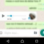 Converta Mensagens de áudio do WhatsApp em Texto (transcrever)